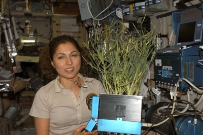 800px-Anousheh_Ansari_in_the_ISS.jpg
