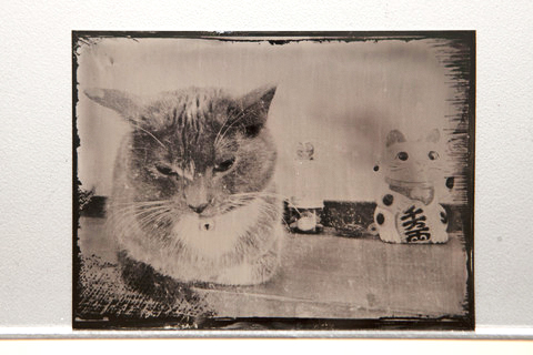 Tintype courtesy of Mia Nakano